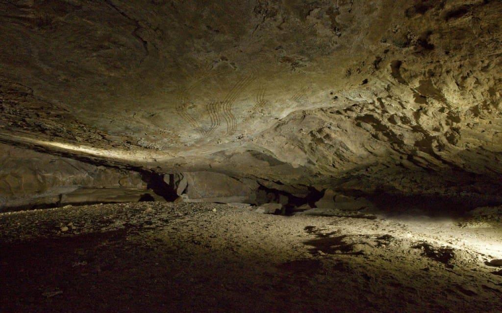Desarrollo Web Cueva Coro Trasito